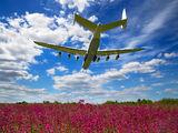 Antonov Airlines /  Design Bureau UR-82060 image