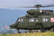 Poland - Army 0807 image