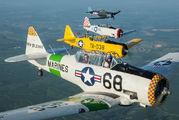 N4983N - Private North American Harvard/Texan (AT-6, 16, SNJ series) aircraft