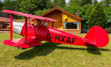 D-MXAF - Private Platzer Kiebitz
