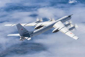 RF-34108 - Russia - Navy Tupolev Tu-142MK
