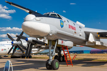 RF-94130 - Russia - Air Force Tupolev Tu-95MS