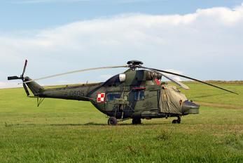 0605 - Poland - Army PZL W-3 Sokół