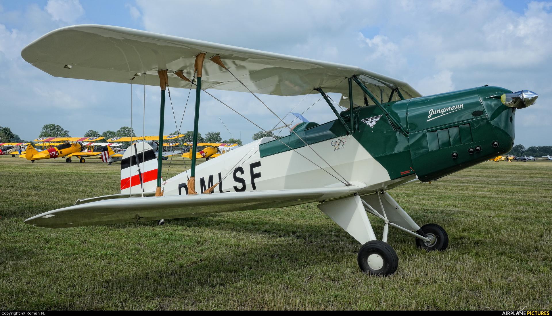Private D-MLSF aircraft at Bienenfarm