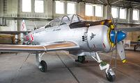 0306 - Poland - Air Force PZL TS-8 Bies aircraft