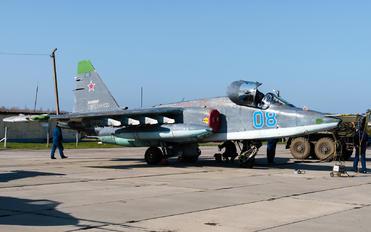 08 - Russia - Air Force Sukhoi Su-25SM