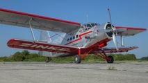 D-FWJG - Private Antonov An-2 aircraft