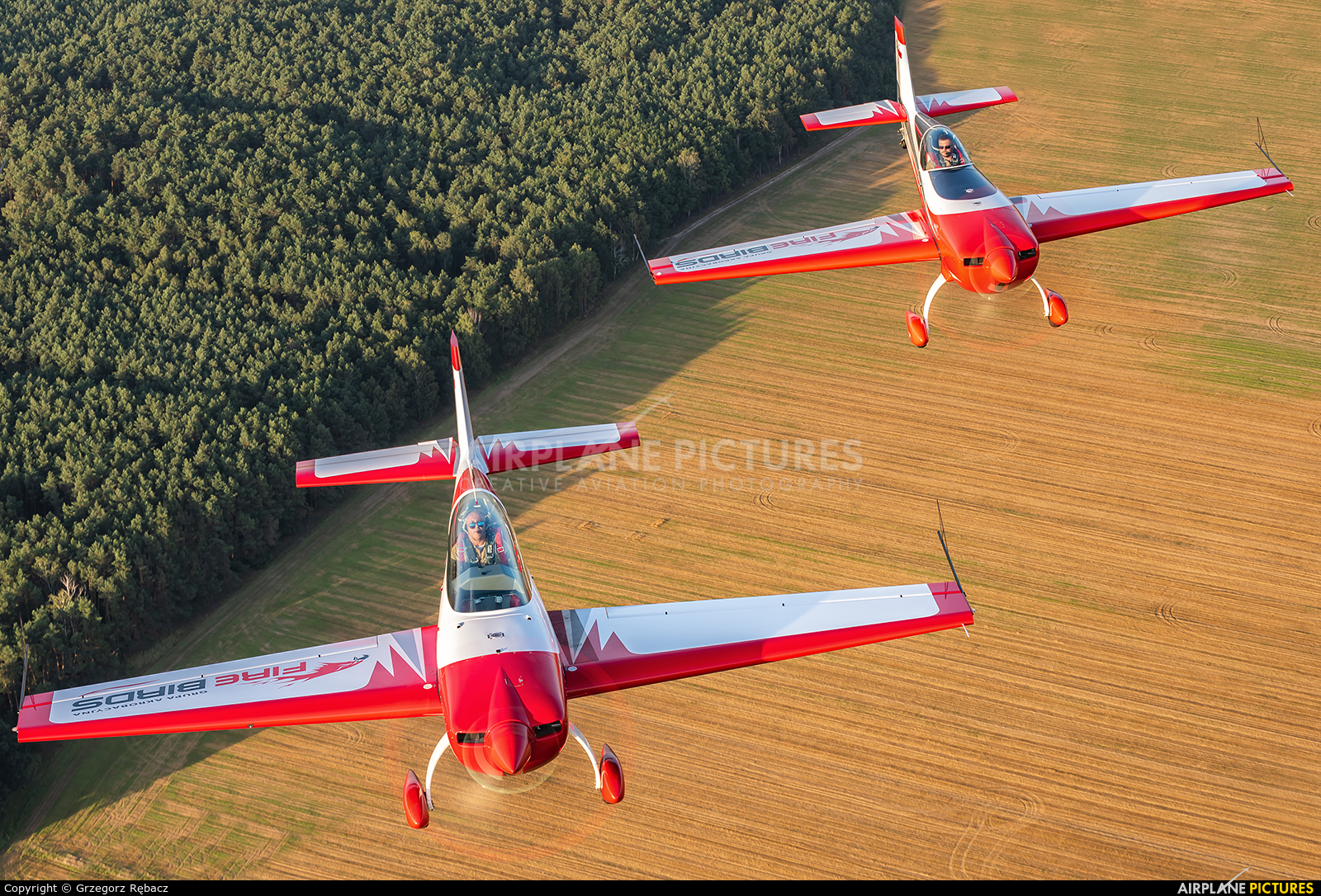 Private SP-TLA aircraft at In Flight - Poland