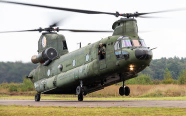 D-665 - Netherlands - Air Force Boeing CH-47D Chinook