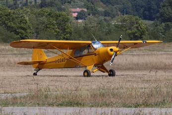 I-CGAO - Private Piper PA-18 Super Cub