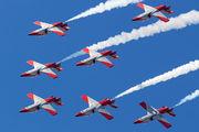 E.25-31 - Spain - Air Force : Patrulla Aguila Casa C-101EB Aviojet aircraft