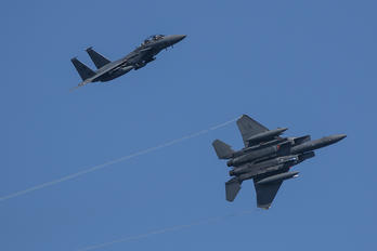 91302 - USA - Air Force McDonnell Douglas F-15E Strike Eagle